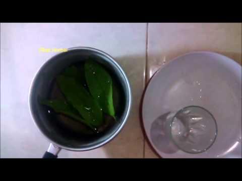 Video Cara Alami mengobati sakit perut   | Obat Herbal