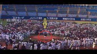 Невероятно но факт. Модель из Японии сыграла против сотен бейсболистов