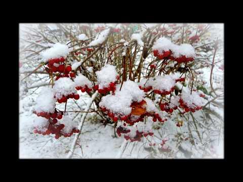 Самые красивые пейзажи уходящей зимы