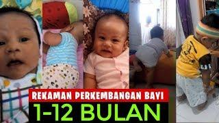 Download Video INILAH REKAMAN PROSES PERKEMBANGAN BAYI USIA 1- 12 BULAN Secara Lengkap MP3 3GP MP4