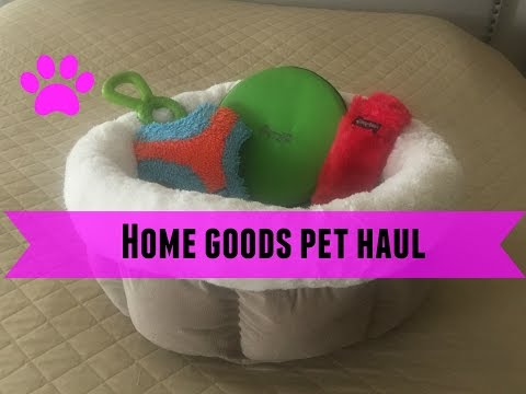 Home Goods Pet Haul