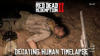 Red Dead Redemption 2 - Decaying NPC Body Timelapse