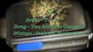 You Ain't No Gangsta - T.A.Z