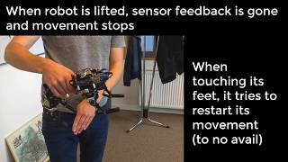 Learning Quadruped Locomotion with spiking networks and FORCE