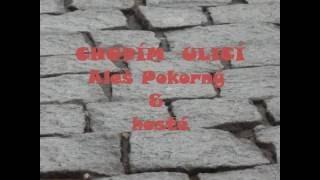 Video Aleš Pokorný & hosté   Chodím ulicí