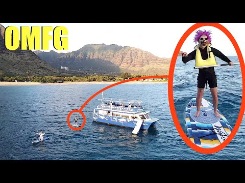 when you see these clowns in the water, don't let them get on your boat! (Drive Away Fast!!)