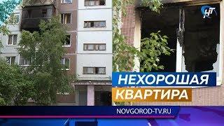 Нетрезвый новгородец поджег квартиру и от испуга выпрыгнул в окно на березу