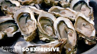 Why Oysters Are So Expensive   So Expensive
