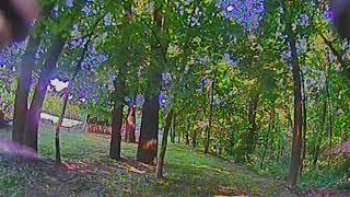 FPV Pilot View Foxeer Predator 4 (DVR HDO2)