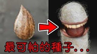 【Mitoza】這絕對是史上最可怕的種子...