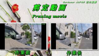 https://www.youtube.com/watch?v=D2ksfb_Li9I