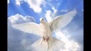 Antony and the Johnsons, One dove