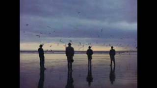Echo And The Bunnymen - The Disease