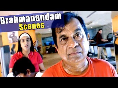 Brahmanandam All Time Hit Comedy Scenes || Non - Stop Back To Back Telugu Comedy Scenes