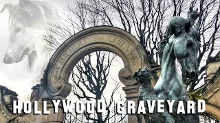 FAMOUS ANIMAL GRAVE TOUR - An Ode To Our Furry Friends