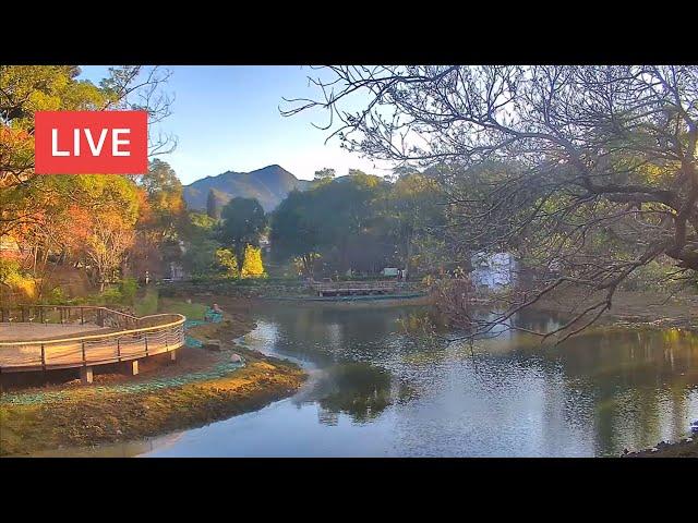 旅遊景點直播 - 即時影像監視器:臺灣路況即時影像、旅遊景點天氣觀測