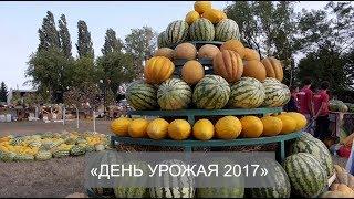"""Строительная группа """"Третий Рим"""" приняла участие в мероприятии """"День урожая 2017"""""""