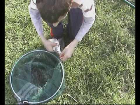 Come fare uno sgabello per pescare è semplice