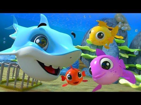 Kids TV Español - Canciones para niños y videos de dibujos animados Live Stream letöltés