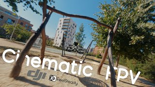 How good is the Rotor Riot DJI Cinewhoop for cinematic FPV? | Reelsteady GO with GoPro Hero 8 | 4K
