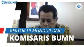 Setelah Dapat Kritikan Negatif, Rektor UI Ari Kuncoro Mundur dari Posisi Komisaris BUMN