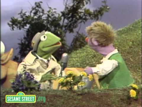 Sesame Street: Pinocchio's Nose | Kermit News - смотреть онлайн на