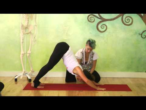 Tools & Techniques To Strengthen Your Chaturanga Dandasana Part Five: Turbo Dog