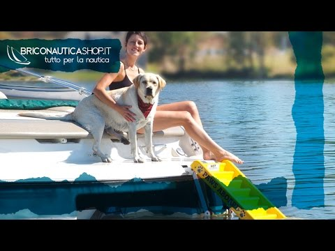 Scaletta per cani - Paws Aboard