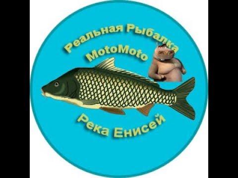 Река Енисей   Реальная Рыбалка