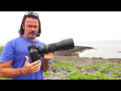 Tamron 150-600mm Review for Nikon ( A011 )