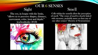 Perception and Reality Power Point Presentation