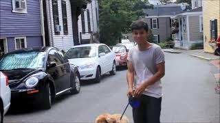 Kris Allen - My Weakness (Music Video)