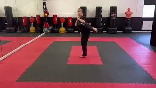 Front leg round house kick