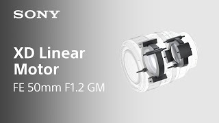 YouTube Video D4kLPs5S4oE for Product Sony FE 50mm F1.2 GM Lens (SEL50F12GM) by Company Sony Electronics in Industry Lenses