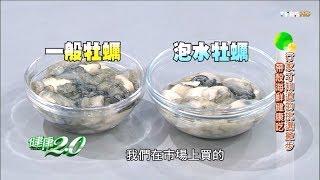 減肥、預防老人痴呆!全世界都寶貝的海鮮你吃了嗎?健康2.0(完整版)