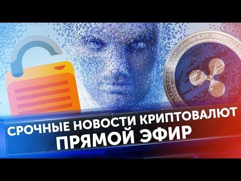 Владимир зубов отзывы криптовалюта