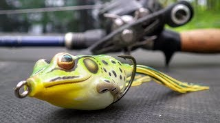 Catch More Bass With The Frog!