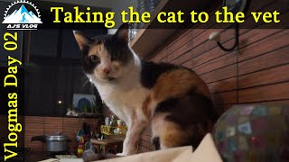 🆕how To Take Your Cat To The Vet How To Get A Cat In A Pet Carrier Honest Video