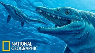 Морские чудовища древности   С точки зрения науки (Full HD)