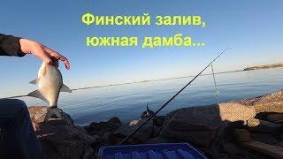 Рыбалка на финском заливе южная дамба