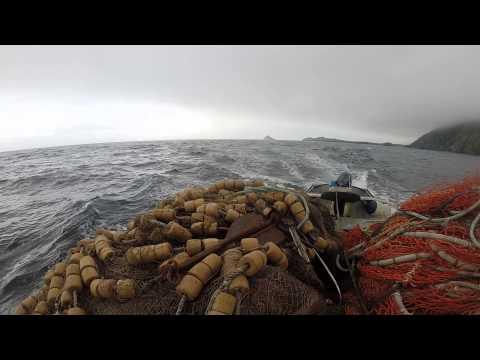 Shelikof Strait Alaska