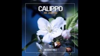 Calippo   Mr  Love You (Original Mix)