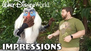 Rafiki Was Shocked!! - Disney World Impressions - Video Youtube