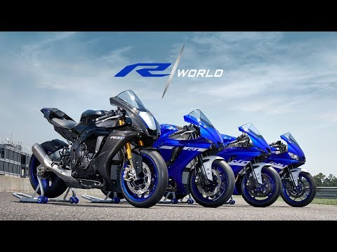 2021 Yamaha YZF-R3 ABS in Mio, Michigan - Video 2