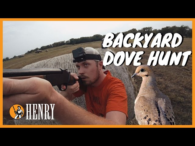 A Henry Dove Hunt | Ep 10 | Hunt with a Henry