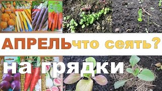 Смотреть онлайн Что сажать в апреле в саду/огороде