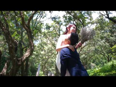 Jason Pang Gallery Short Video