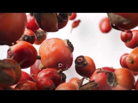 Fundizol allatto di trattamento di un fungo di ununghia il prezzo