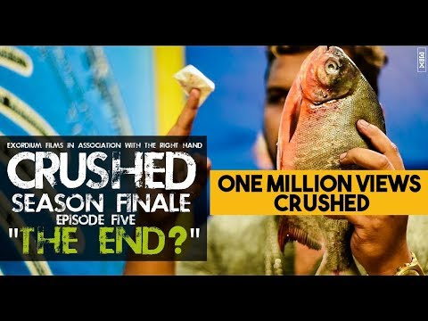 Crushed web series