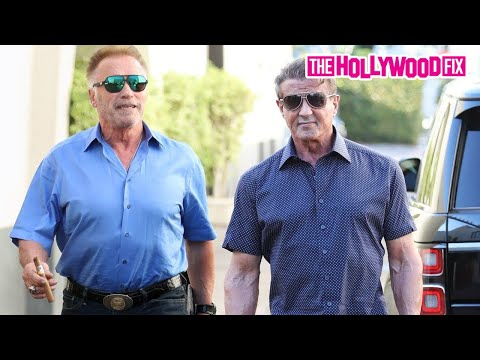 Sylvester Stallone & Arnold Schwarzenegger Speak On Creed 3 While Leaving Lunch In Beverly Hills